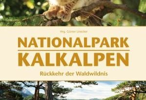Nationalpark Kalkalpen 299x205 - Nationalpark Kalkalpen